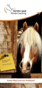 Probleme mit dem Pferd?